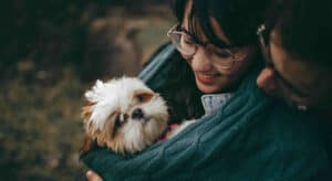 Common Mistake New Dog Owners Make